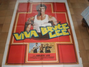bruceploitation_collector_viva bruce Lee