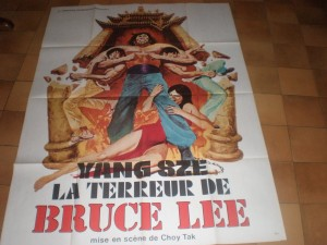 bruceploitation_collector_yang sze la terreur de bruce lee