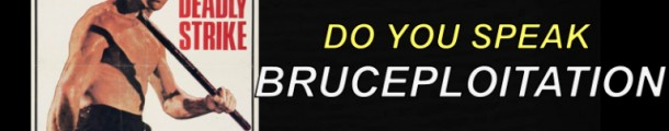 bruceploitation_collector_bruceno_bruce li_video_vlog_french_english_bruce le_livre_book_talk show_bruce is back