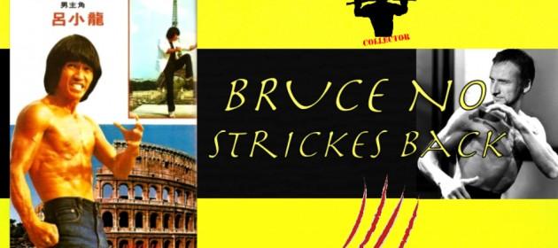 bruce contre attaque_ninjas strickes back_bruce no_bruceploitation_brucesploitation_brucexploitation